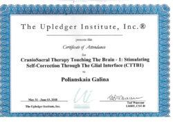 Остеопатия центральной нервной системы 1