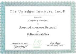 Сомато-эмоциональное освобождение 1